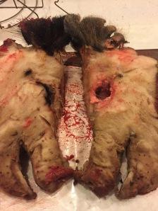 Hog Head Halves