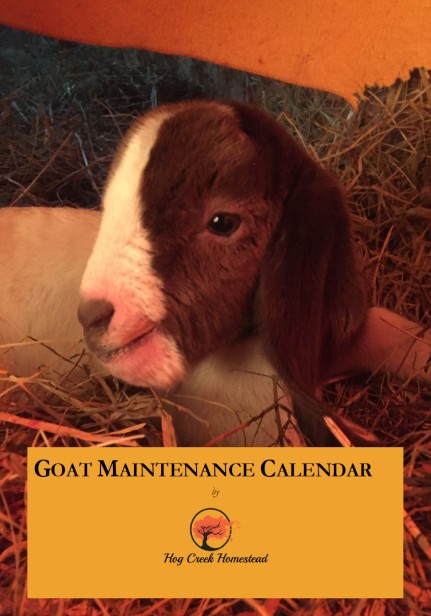 Goat Maintenance Calendar